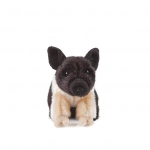 Toy Pug